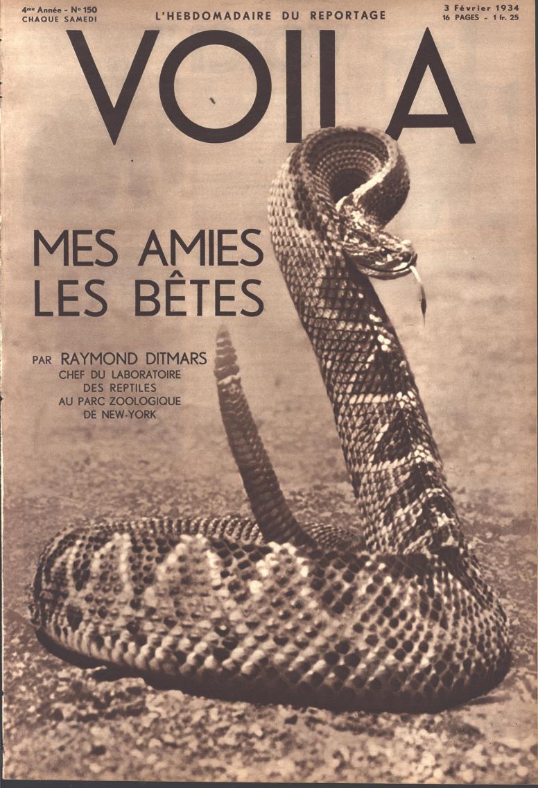 Voila 1934 02 3 fc
